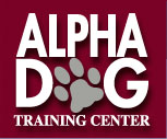 Alpha Dog Training Center
